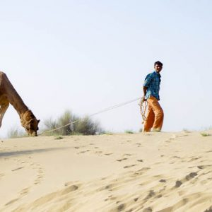Chamelier et dromadaire, désert de Taar, Jaiselmer, Inde
