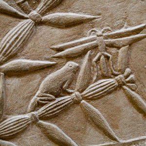 Décoration des tombeaux, Saqqarah