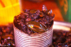 Insectes frits, Nourriture, Cambodge-2