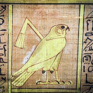 Horus, papyrus